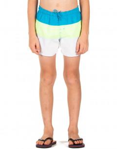 ADIDAS Colorblock Swim Shorts Multi