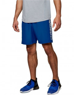 UNDER ARMOUR Woven Graphic Wordmark Shorts Blue