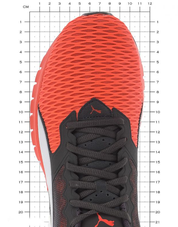 PUMA Ignite Dual Orange - 1