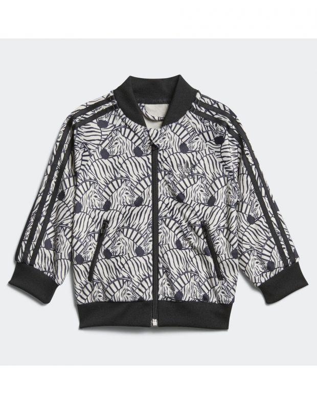 ADIDAS Zebra Track Suit Grey - 2